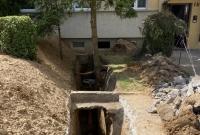 Drzewo kolidowało z wymianą kanalizacji! Udało się uniknąć wycinki