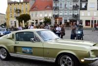 Mustangi na gnieźnieńskim Rynku