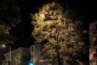 Najciemniej pod latarnią, czyli jak nie wymieniać słupów oświetleniowych