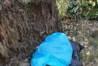 Wyrzucił śmieci w lesie - stanie przed Sądem!