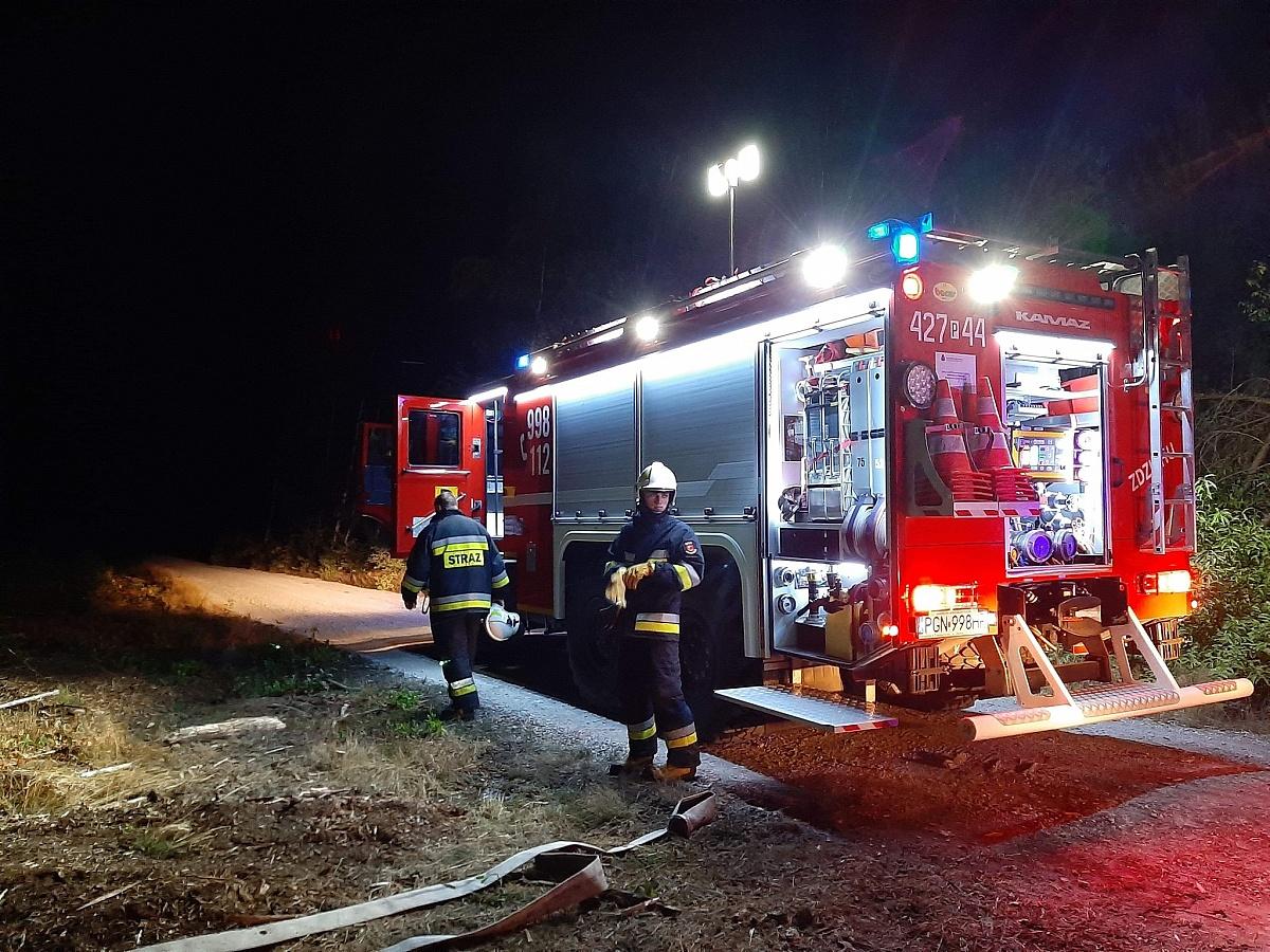 Pożar lasu w Modliszewku