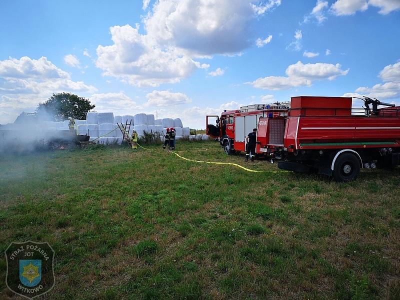 Bydło poparzone w pożarze