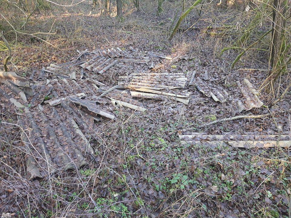 Eternit w lesie przy szlakach turystycznych