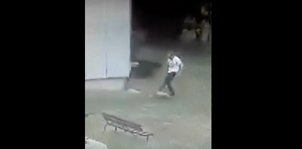 Mężczyzna kopał psa! Właścicielka szczeniaka ma sądowy zakaz posiadania zwierząt
