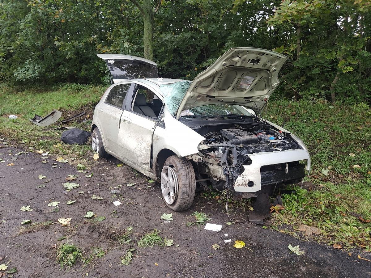 Wypadek w Brzozogaju! Fiat wypadł z drogi i bokiem uderzył w drzewo