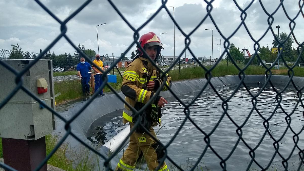 Strażacy ratowali kaczki