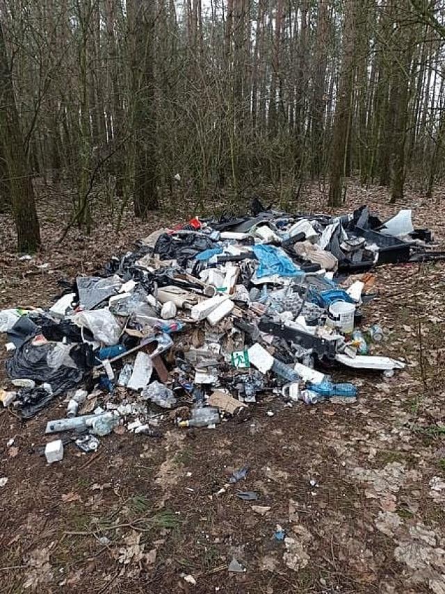 Ponad 8 tysięcy złotych kary za wywiezienie śmieci do lasu!