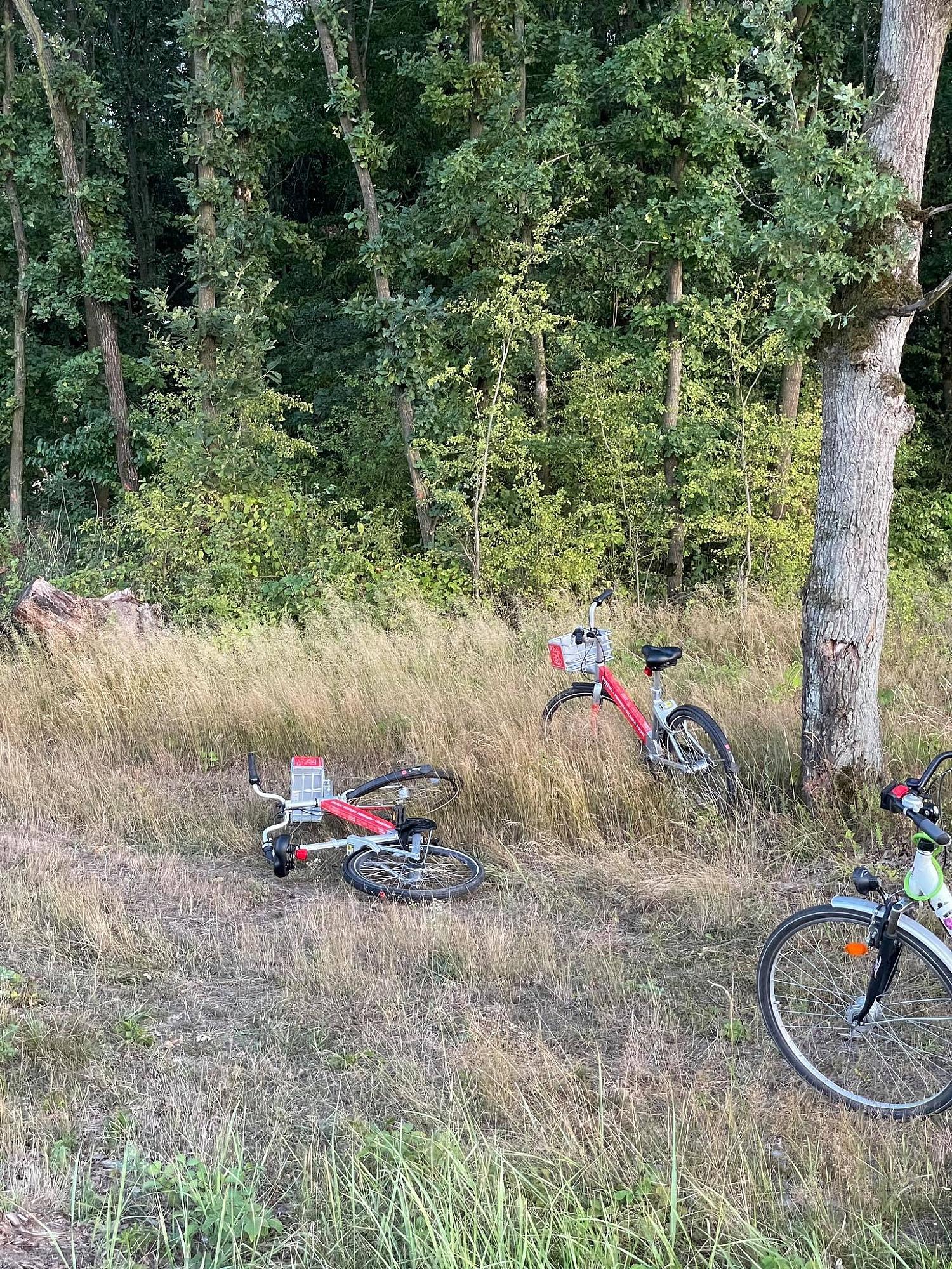 Porzucone rowery miejskie? Użytkownicy zostawiają je gdzie popadnie