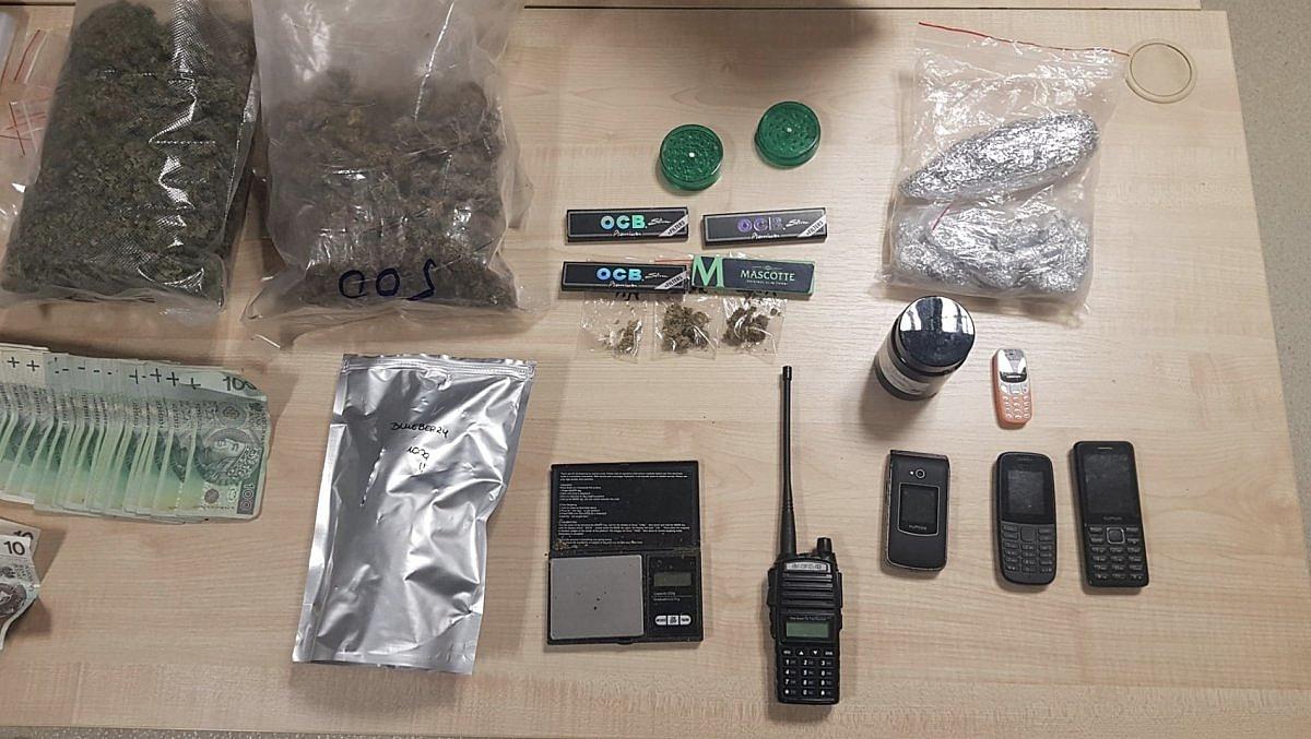 Policjanci operacyjni z Gniezna wyeliminowali z rynku prawie 900 gramów marihuany